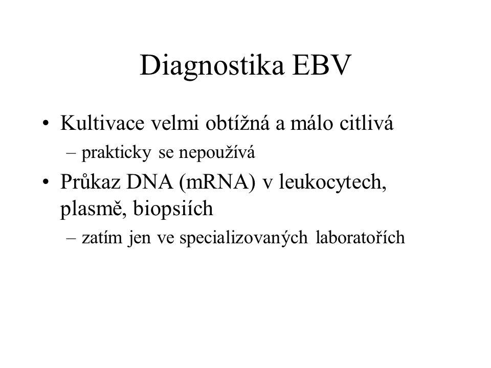 Diagnostika EBV Kultivace velmi obtížná a málo citlivá