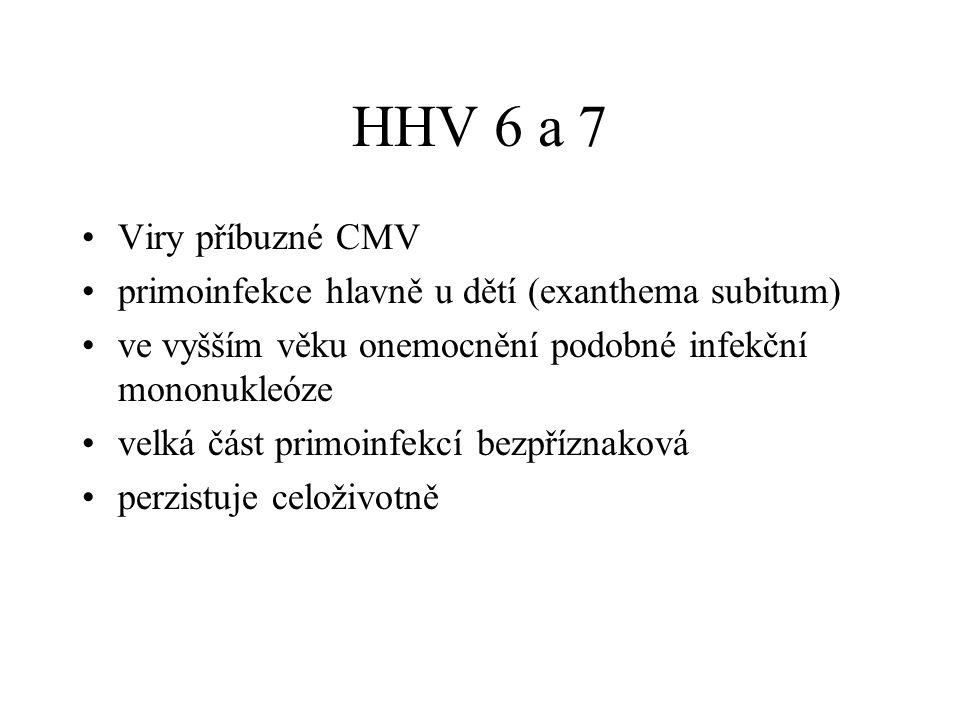 HHV 6 a 7 Viry příbuzné CMV. primoinfekce hlavně u dětí (exanthema subitum) ve vyšším věku onemocnění podobné infekční mononukleóze.