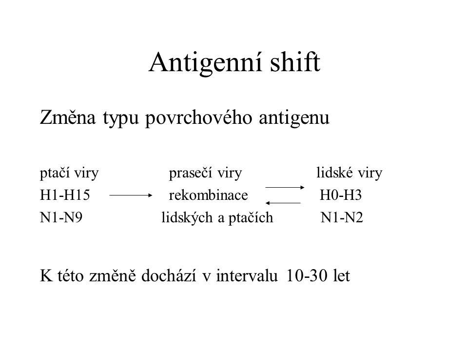 Antigenní shift Změna typu povrchového antigenu