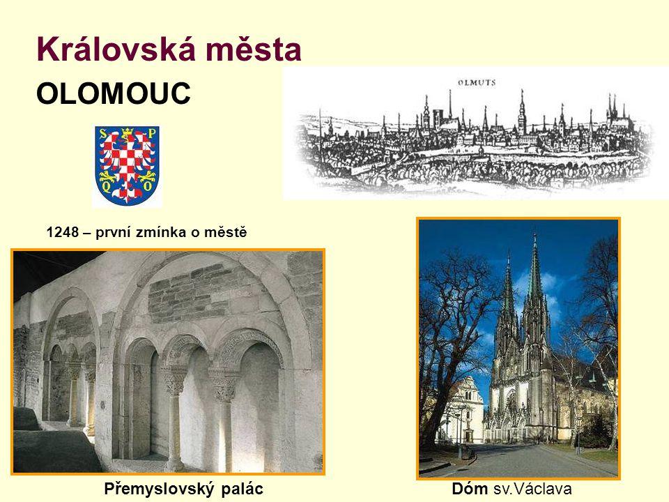 Královská města OLOMOUC Přemyslovský palác Dóm sv.Václava