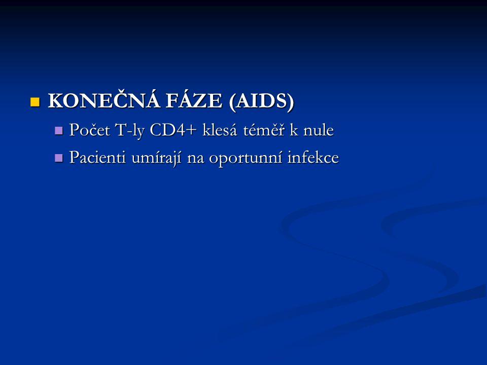 KONEČNÁ FÁZE (AIDS) Počet T-ly CD4+ klesá téměř k nule