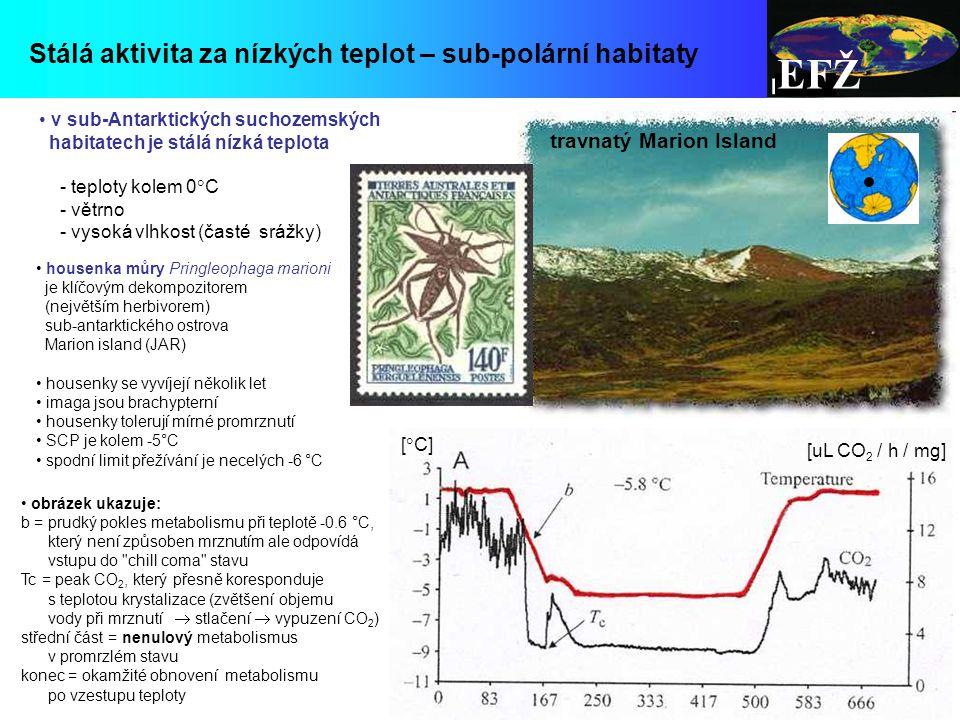 EFŽ Stálá aktivita za nízkých teplot – sub-polární habitaty