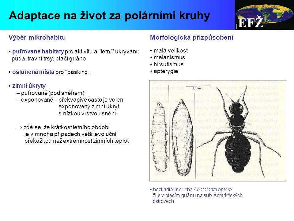 EFŽ Adaptace na život za polárními kruhy Výběr mikrohabitu