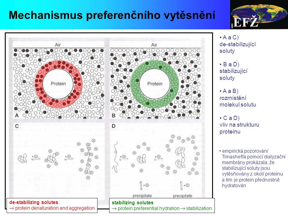 EFŽ Mechanismus preferenčního vytěsnění A a C) de-stabilizující soluty