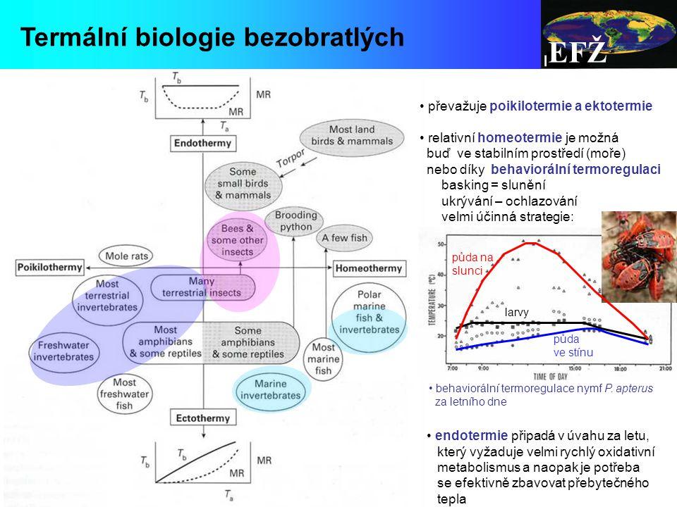 EFŽ Termální biologie bezobratlých