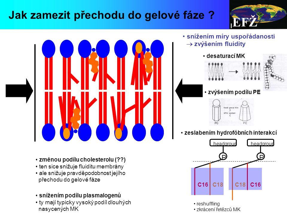 EFŽ Jak zamezit přechodu do gelové fáze P