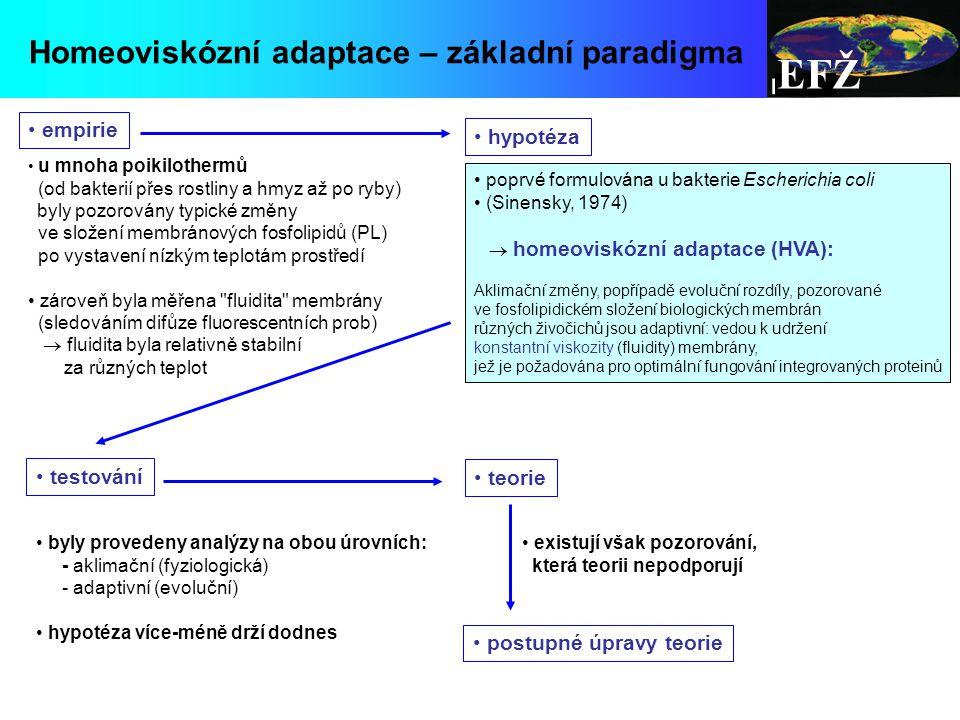 EFŽ Homeoviskózní adaptace – základní paradigma empirie hypotéza