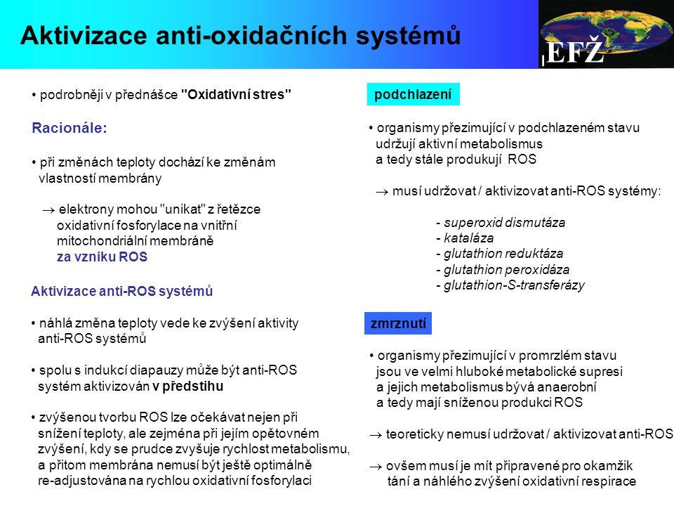 EFŽ Aktivizace anti-oxidačních systémů Racionále: