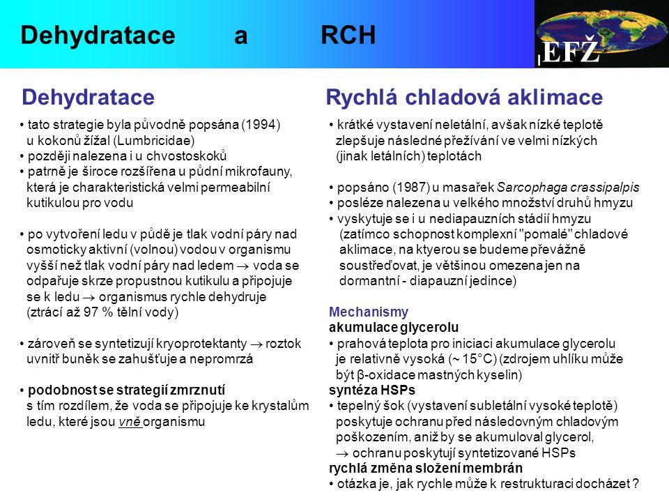 EFŽ Dehydratace a RCH Dehydratace Rychlá chladová aklimace