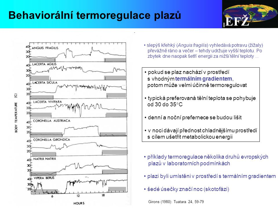 EFŽ Behaviorální termoregulace plazů pokud se plaz nachází v prostředí