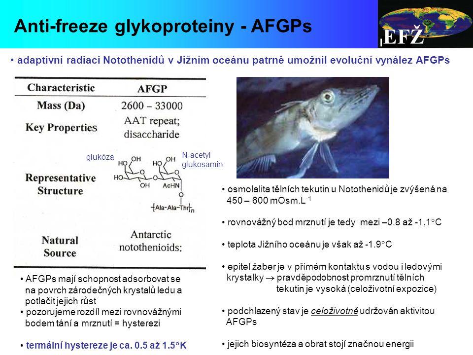 EFŽ Anti-freeze glykoproteiny - AFGPs