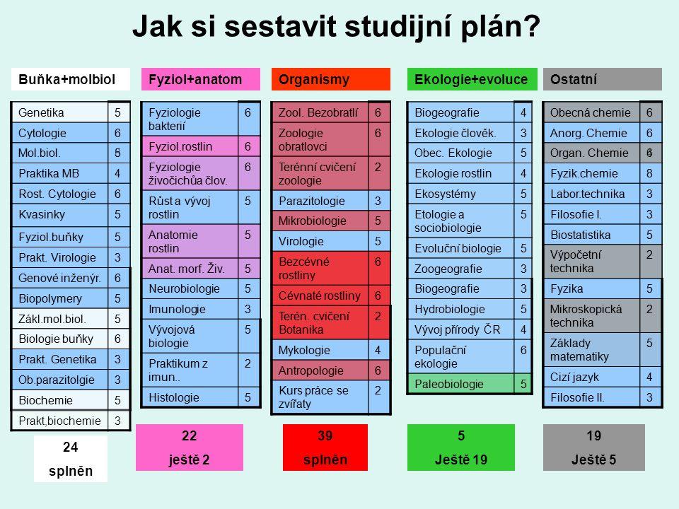 Jak si sestavit studijní plán