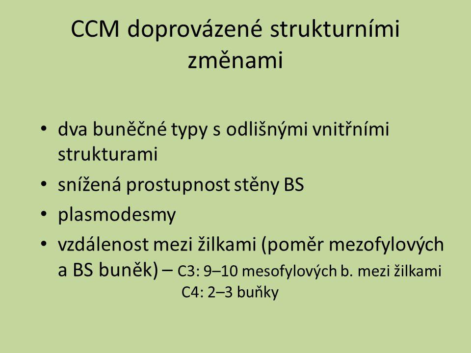 CCM doprovázené strukturními změnami