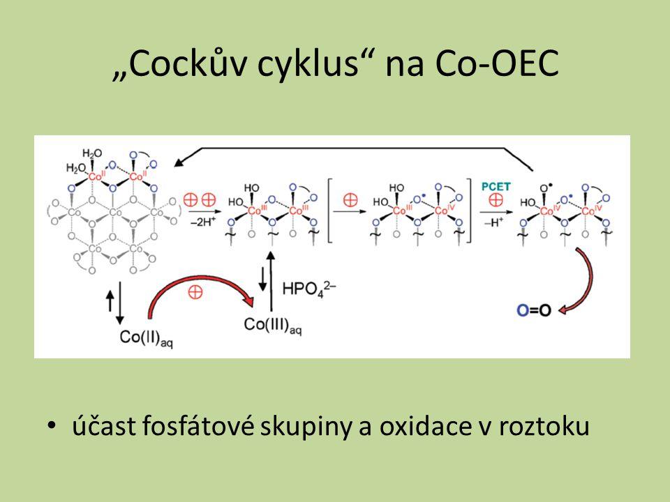 """Cockův cyklus na Co-OEC"