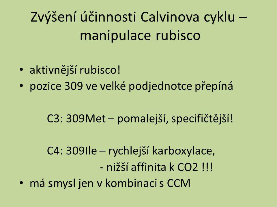 Zvýšení účinnosti Calvinova cyklu – manipulace rubisco