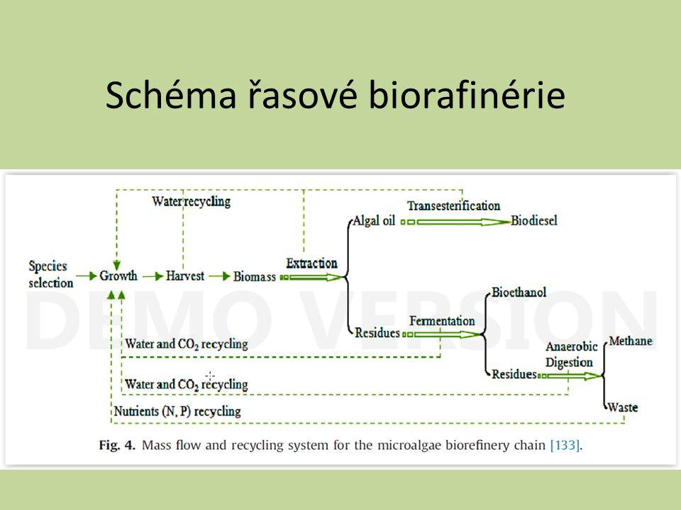 Schéma řasové biorafinérie