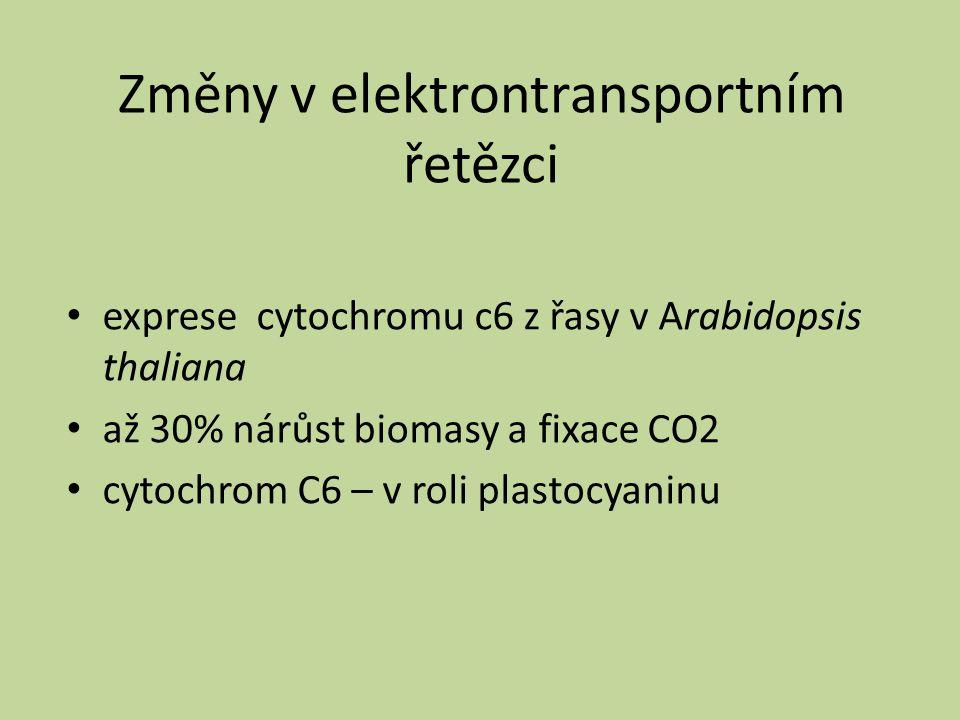 Změny v elektrontransportním řetězci