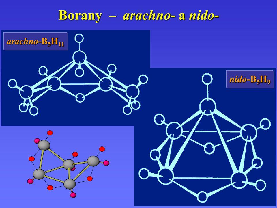 Borany – arachno- a nido-