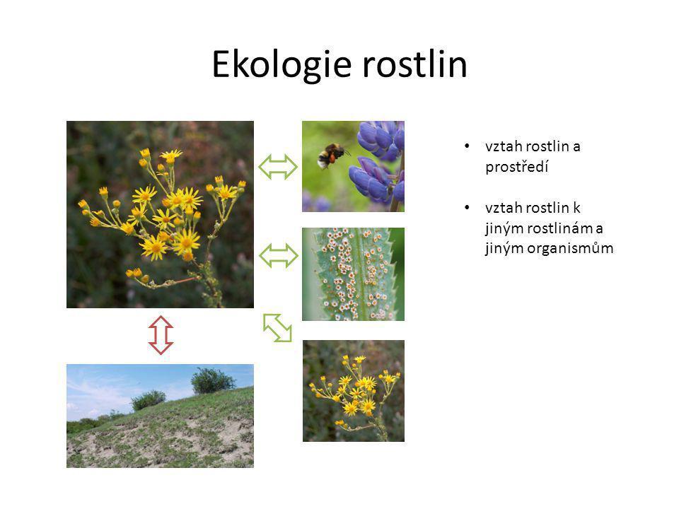 Ekologie rostlin vztah rostlin a prostředí