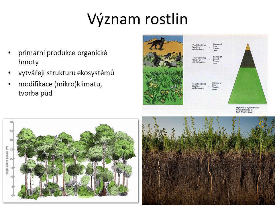 Význam rostlin primární produkce organické hmoty