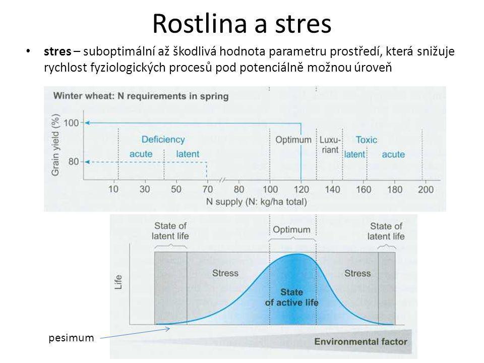 Rostlina a stres
