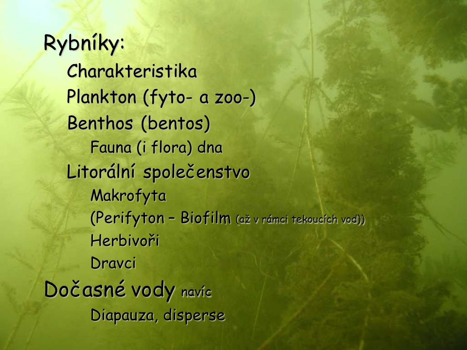 Rybníky: Dočasné vody navíc Charakteristika Plankton (fyto- a zoo-)