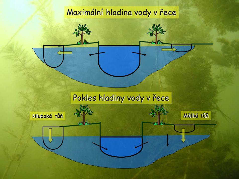 Maximální hladina vody v řece