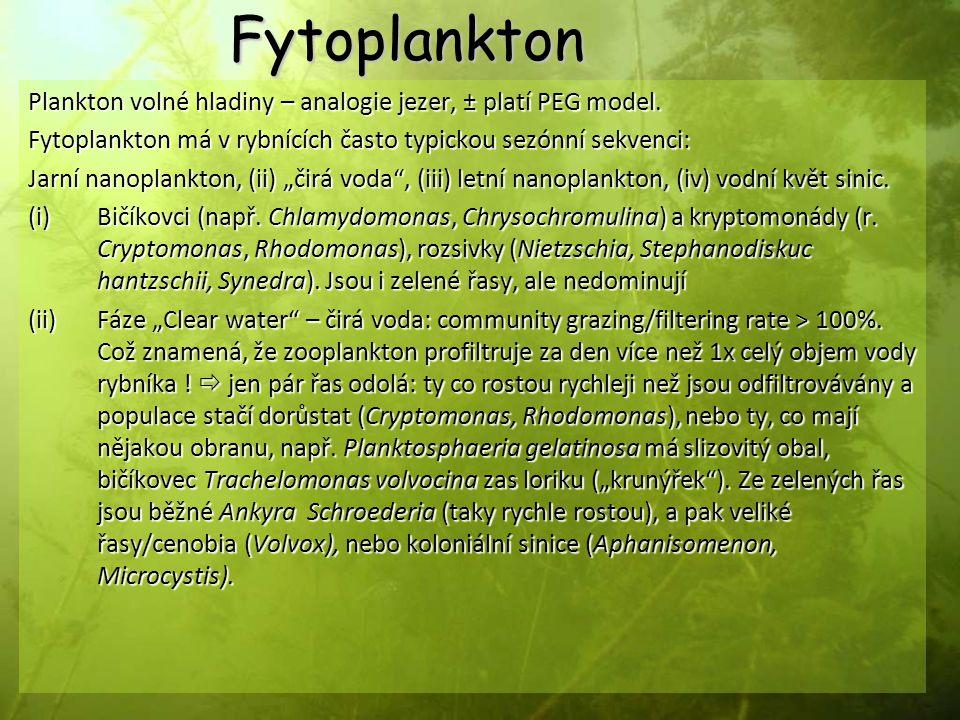 Fytoplankton Plankton volné hladiny – analogie jezer, ± platí PEG model. Fytoplankton má v rybnících často typickou sezónní sekvenci: