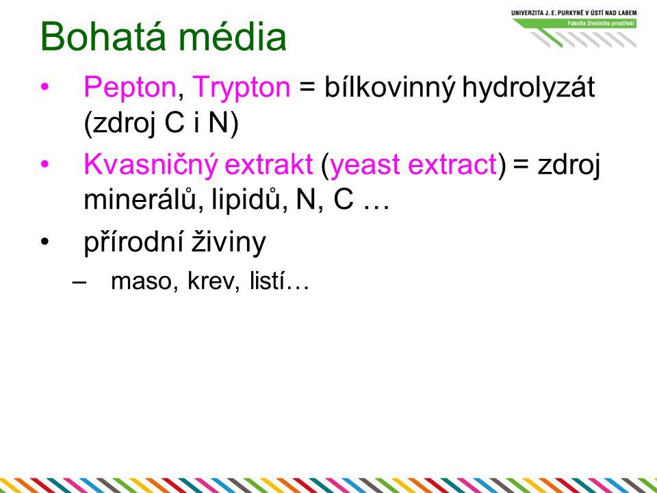 Bohatá média Pepton, Trypton = bílkovinný hydrolyzát (zdroj C i N)
