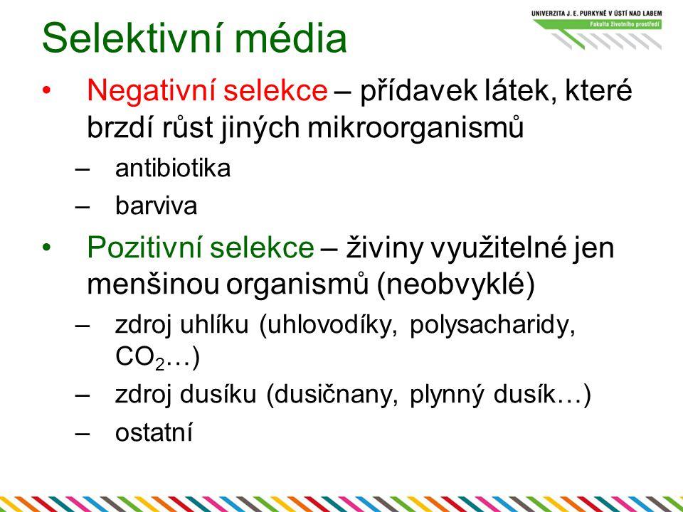 Selektivní média Negativní selekce – přídavek látek, které brzdí růst jiných mikroorganismů. antibiotika.