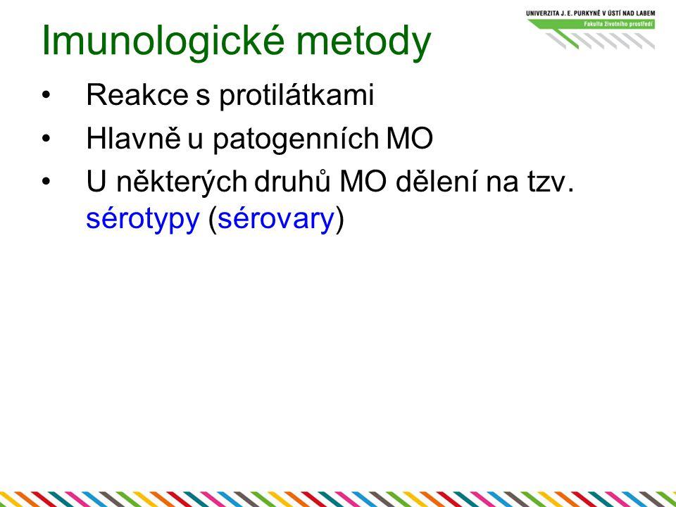 Imunologické metody Reakce s protilátkami Hlavně u patogenních MO