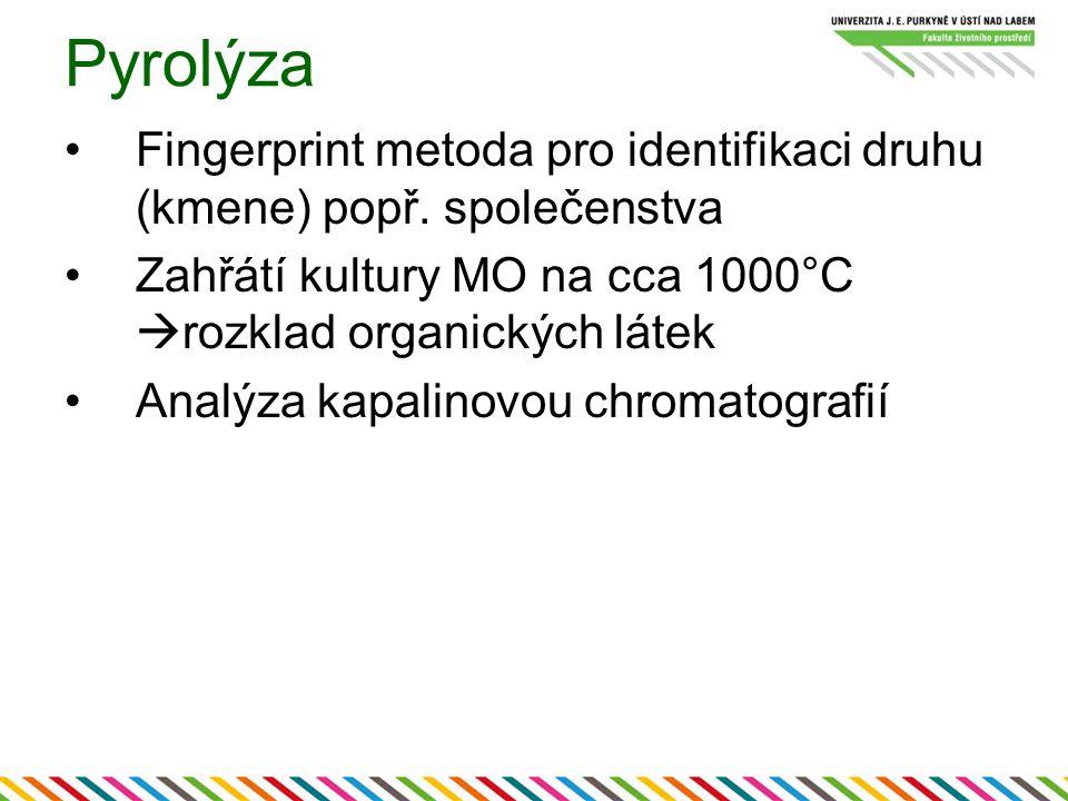 Pyrolýza Fingerprint metoda pro identifikaci druhu (kmene) popř. společenstva. Zahřátí kultury MO na cca 1000°C rozklad organických látek.