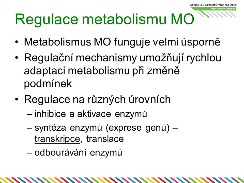 Regulace metabolismu MO