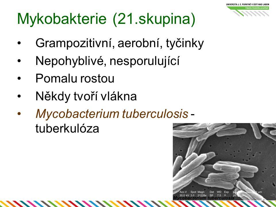 Mykobakterie (21.skupina)
