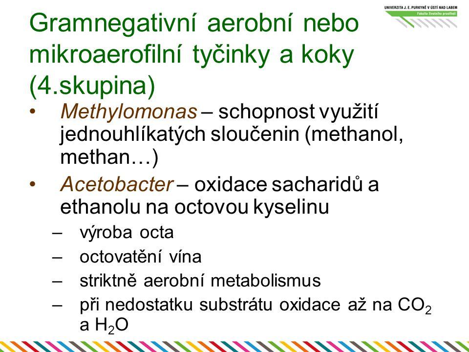 Gramnegativní aerobní nebo mikroaerofilní tyčinky a koky (4.skupina)
