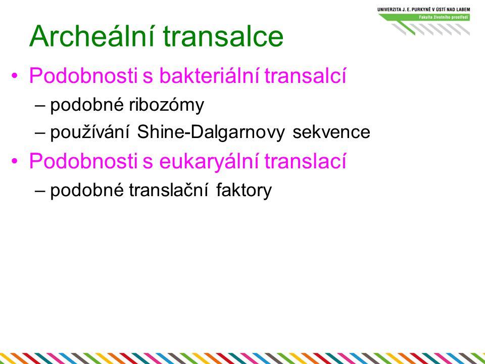 Archeální transalce Podobnosti s bakteriální transalcí