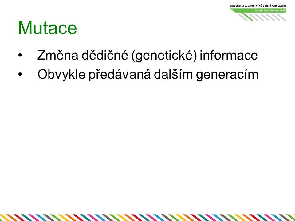 Mutace Změna dědičné (genetické) informace