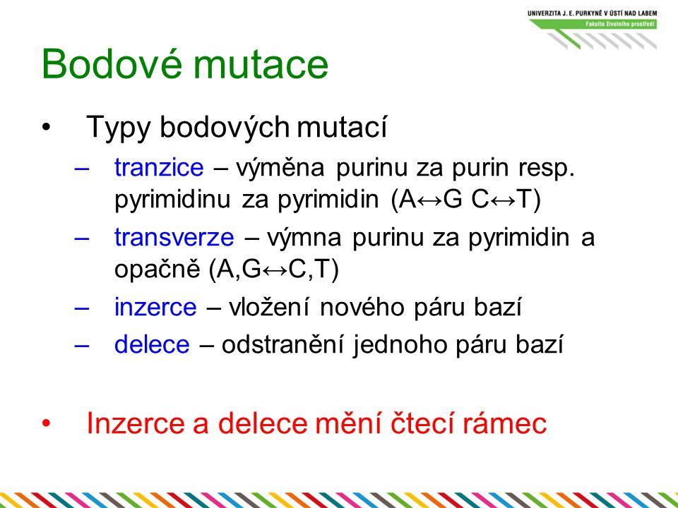 Bodové mutace Typy bodových mutací Inzerce a delece mění čtecí rámec