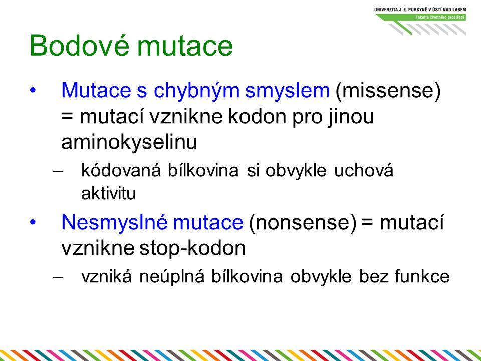 Bodové mutace Mutace s chybným smyslem (missense) = mutací vznikne kodon pro jinou aminokyselinu. kódovaná bílkovina si obvykle uchová aktivitu.