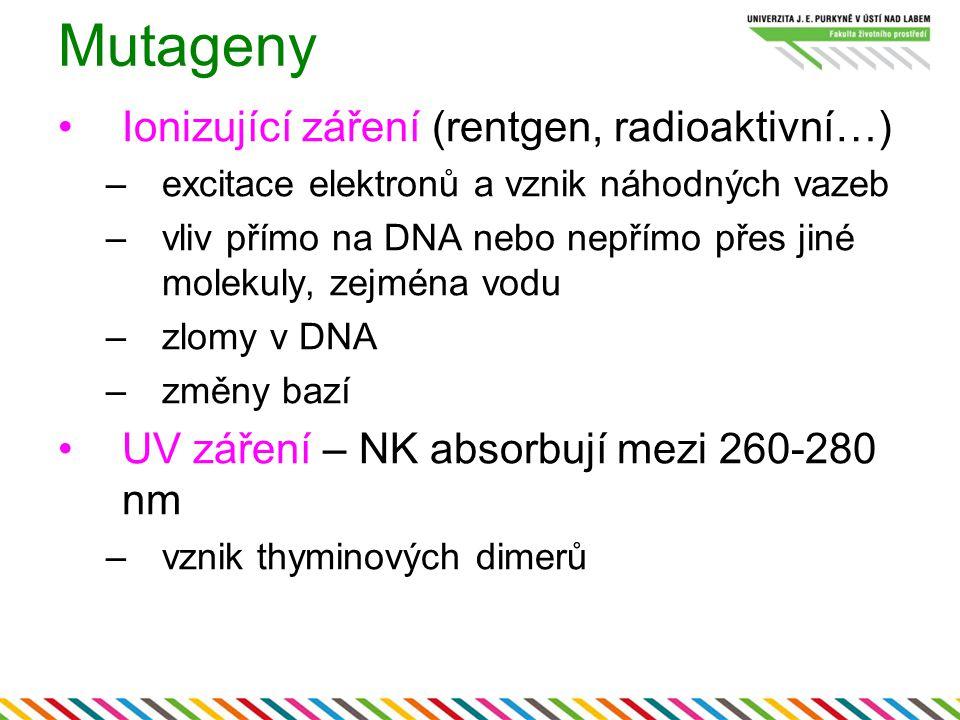 Mutageny Ionizující záření (rentgen, radioaktivní…)