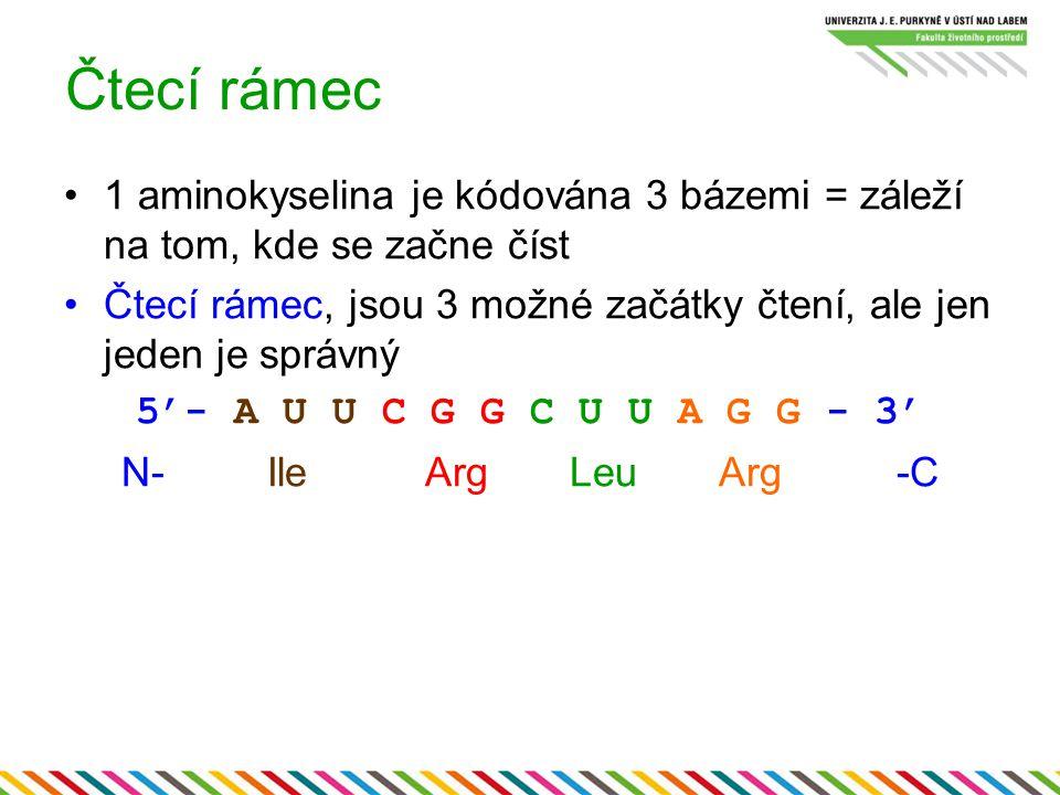 Čtecí rámec 1 aminokyselina je kódována 3 bázemi = záleží na tom, kde se začne číst.