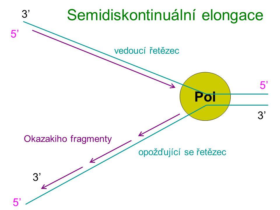 Semidiskontinuální elongace