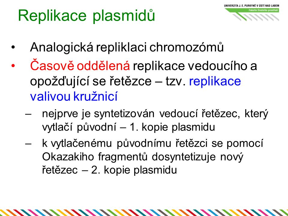 Replikace plasmidů Analogická repliklaci chromozómů