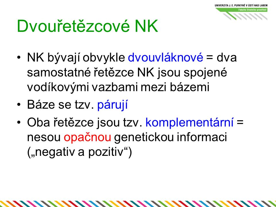 Dvouřetězcové NK NK bývají obvykle dvouvláknové = dva samostatné řetězce NK jsou spojené vodíkovými vazbami mezi bázemi.