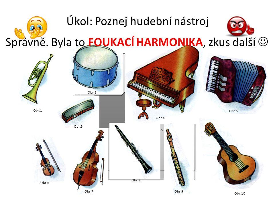 Úkol: Poznej hudební nástroj