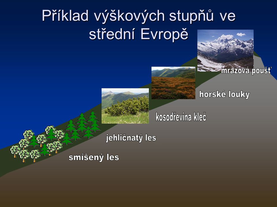 Příklad výškových stupňů ve střední Evropě