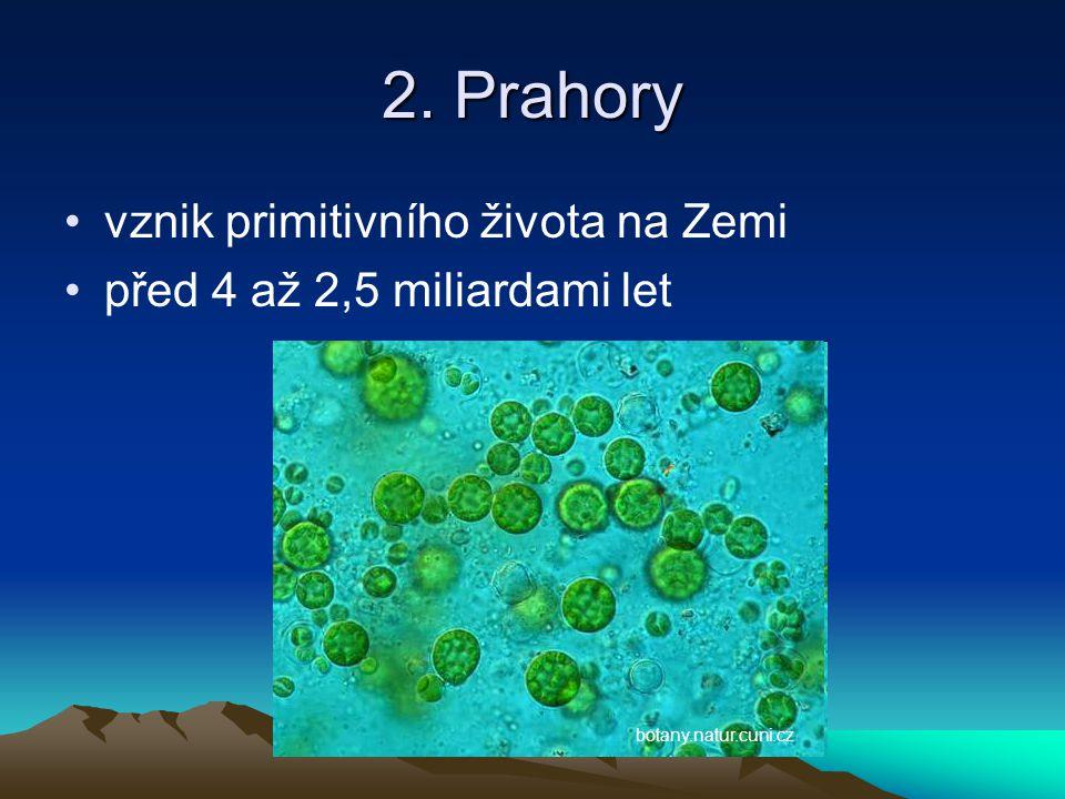 2. Prahory vznik primitivního života na Zemi
