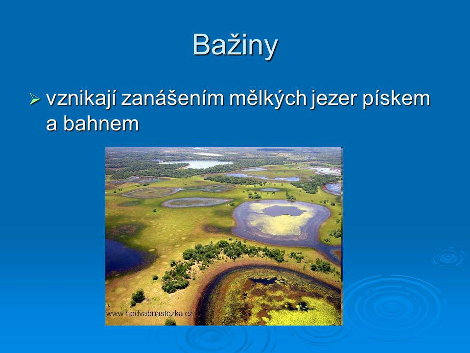 Bažiny vznikají zanášením mělkých jezer pískem a bahnem