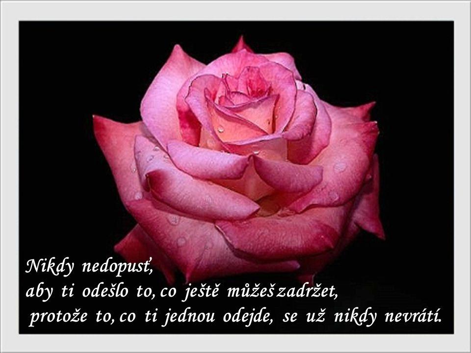Nikdy nedopusť, aby ti odešlo to, co ještě můžeš zadržet, protože to, co ti jednou odejde, se už nikdy nevrátí.