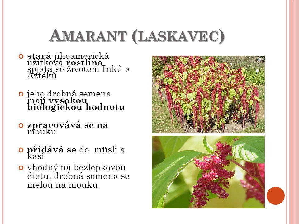 Amarant (laskavec) stará jihoamerická užitková rostlina spjata se životem Inků a Aztéků. jeho drobná semena mají vysokou biologickou hodnotu.